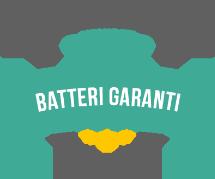 Batteri Garanti